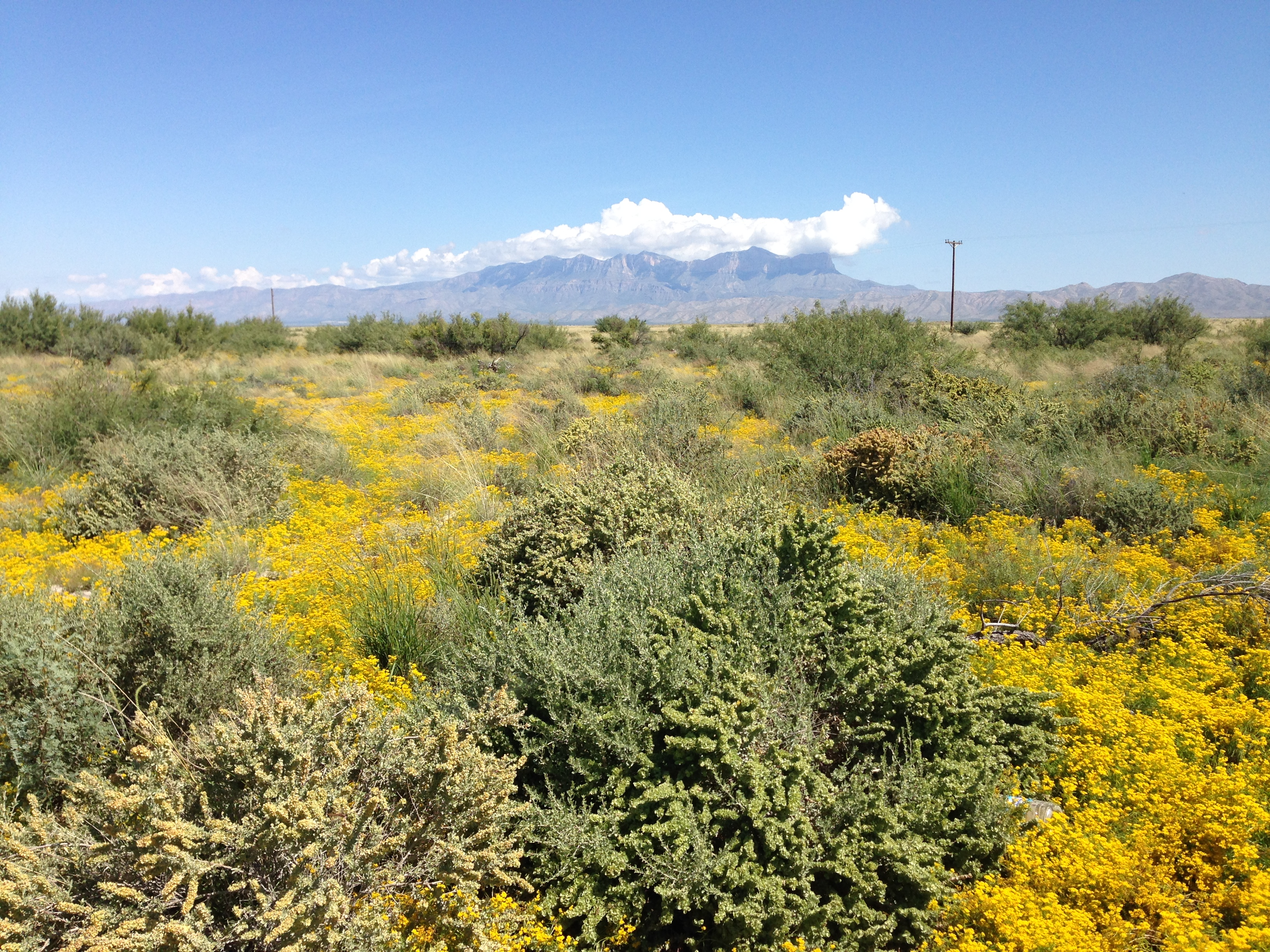 Guadalupe Peak from a Distance